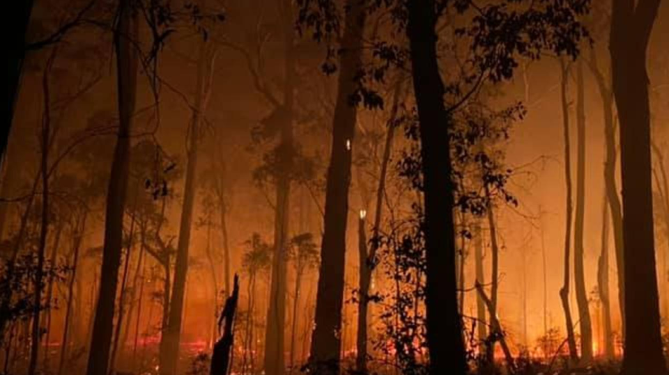 Facebook fundraising spikes after bushfires